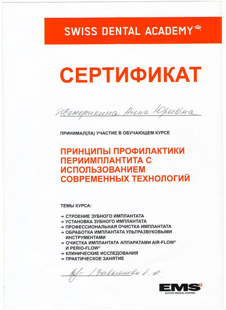 Шевелюхина (Жемерикина) Анна Юрьевна - сертификат №4