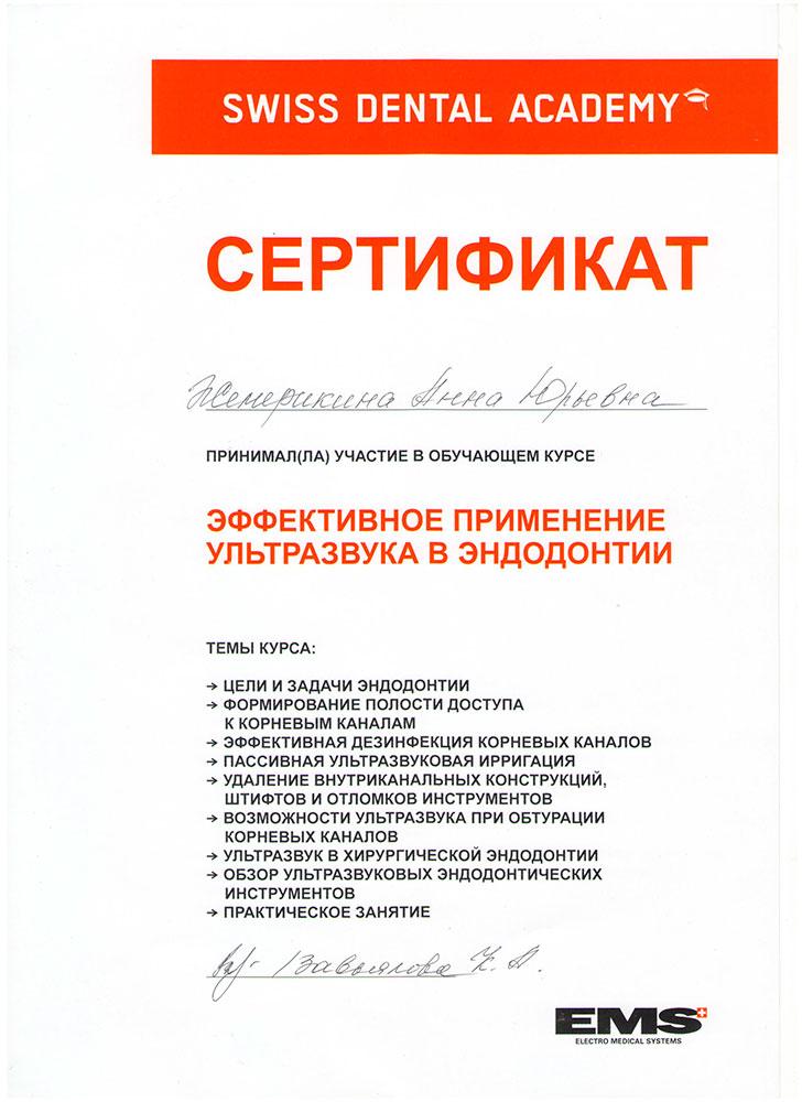 Шевелюхина (Жемерикина) Анна Юрьевна - сертификат №5